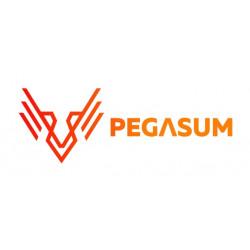 Pegasum
